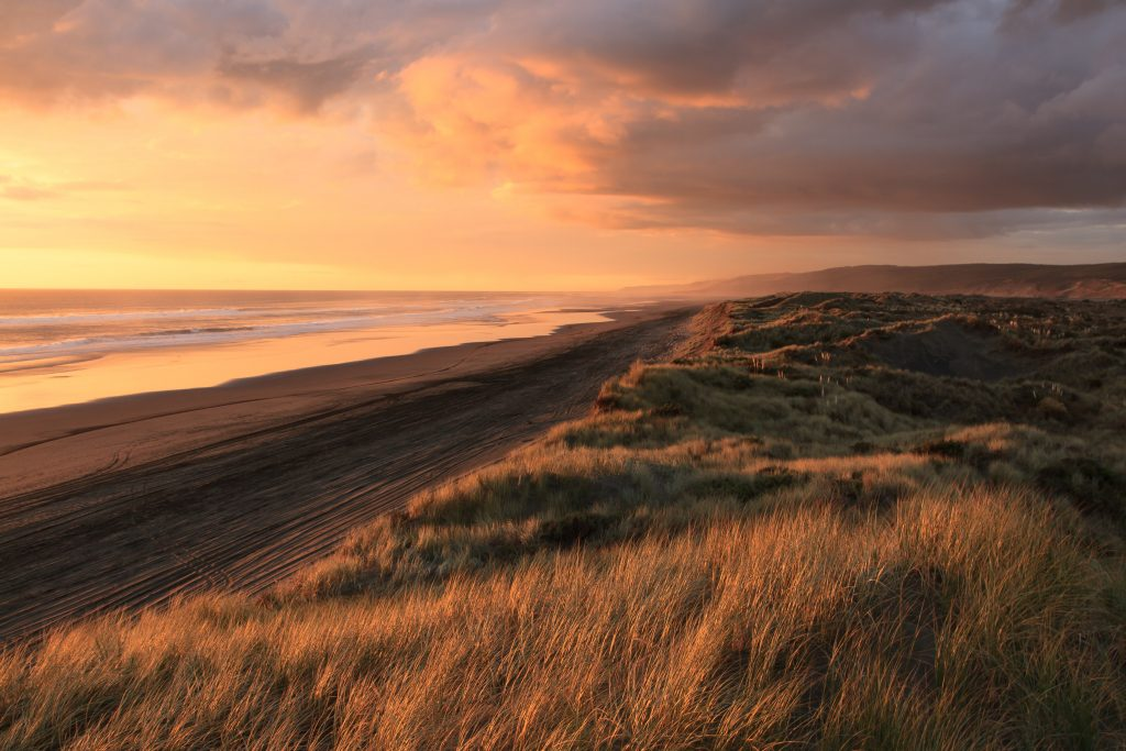 Sunset on a long empty beach flanked by grasslands