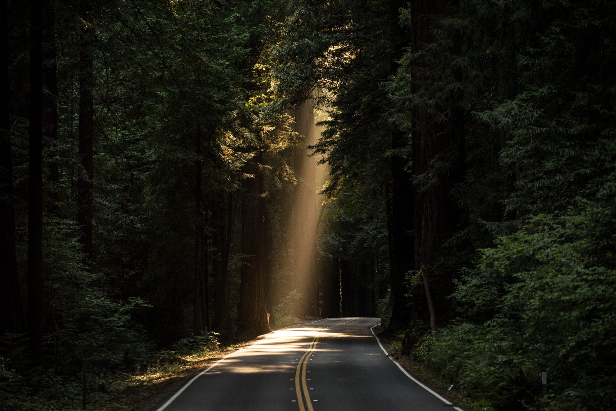 A ray of light shining down onto a dark road
